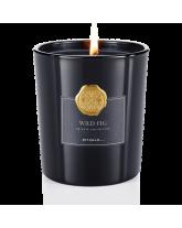 Wild Fig Scented žvakė